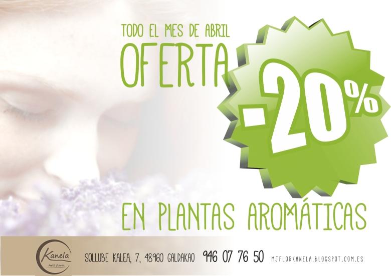 plantas aromaticas 2013_3