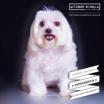 Sorteo sesión fotográfica -Aitziber Bonilla